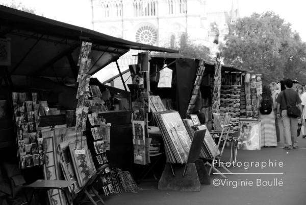 Quais Saint michel, Paris