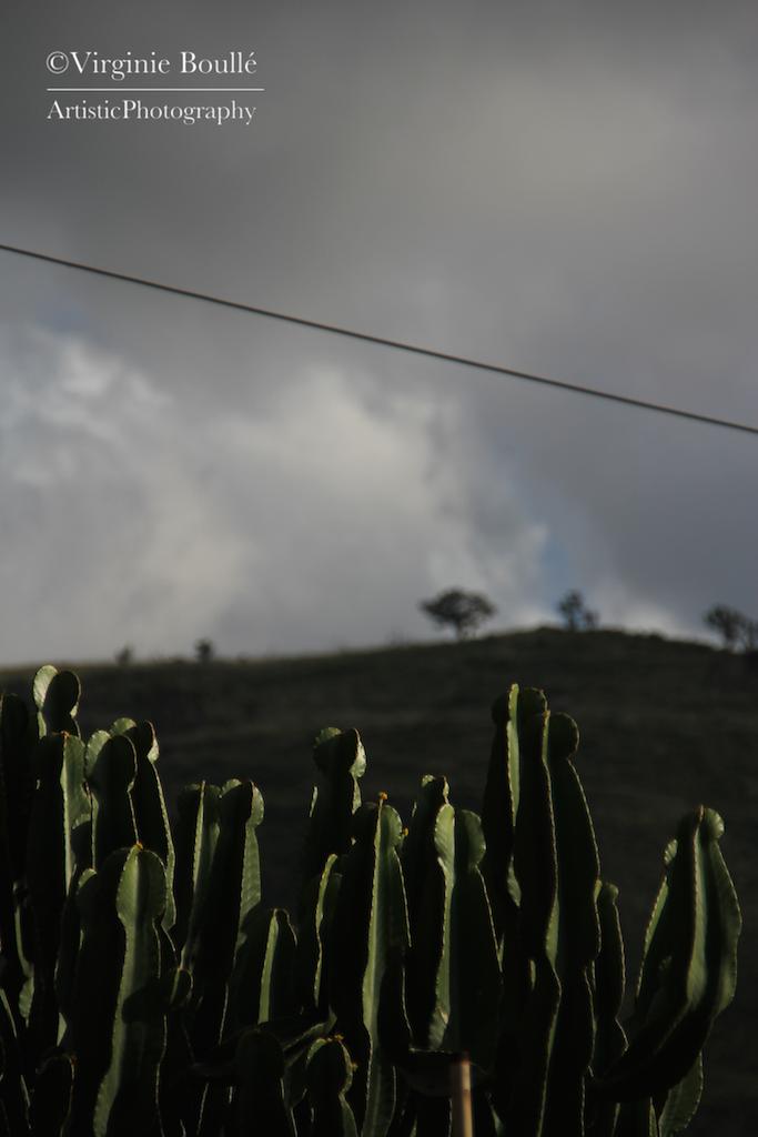 Cefalu-Sicile 19