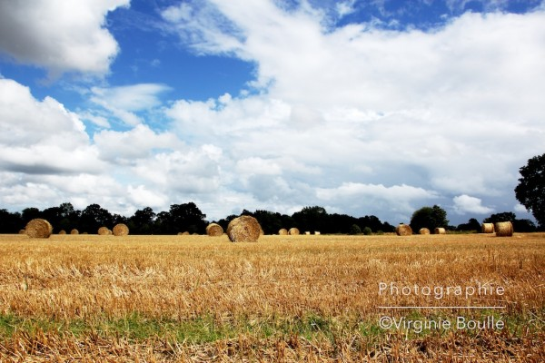 campagne_3
