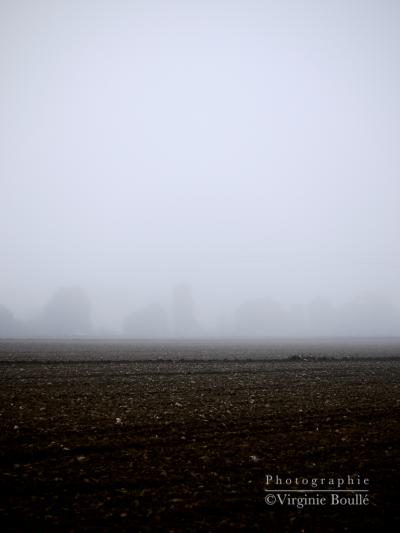 Bretagne novembre 2011 3