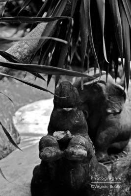 Namuang, Koh Samui, Thaïlande ©Virginie Boullé
