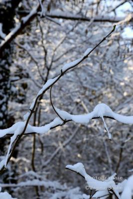 Paysage Sud Essonne sous la neige ©Virginie Boullé
