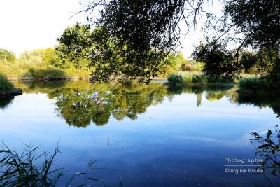 Marais d'Itteville ©Virginie Boullé