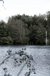 Vert-le-petit, Essonne, France ©Virginie Boullé, Artisticphotography