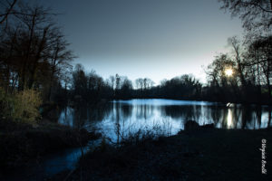 Marais d'Aubin, Itteville, Essonne (91) France, ©Virginie Boullé